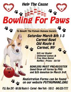 Bowling Poster 2014 copy