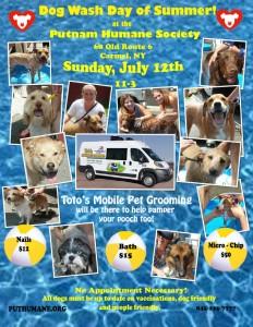 Dog Wash Poster-2015