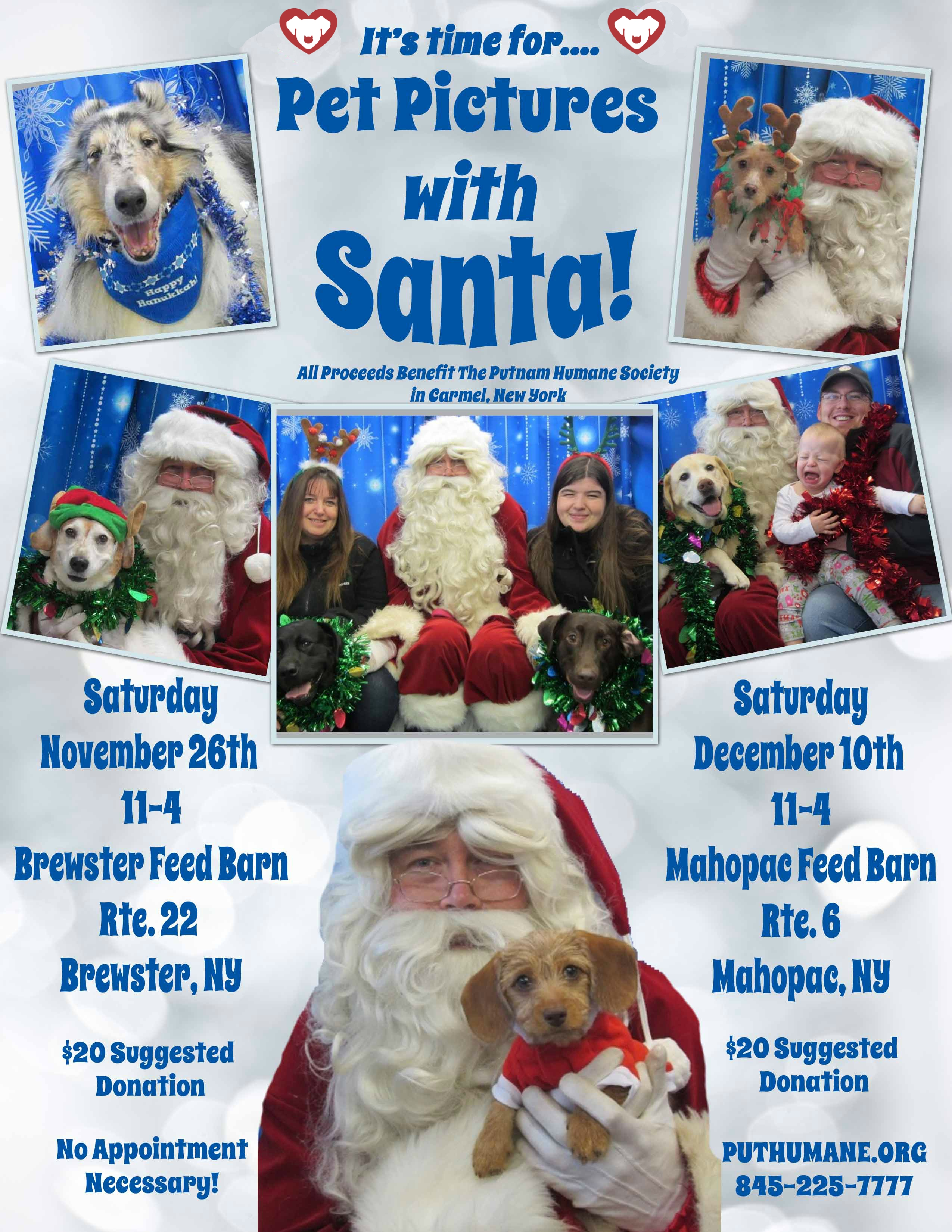 Upcoming Events Pet Pictures With Santa At The Mahopac