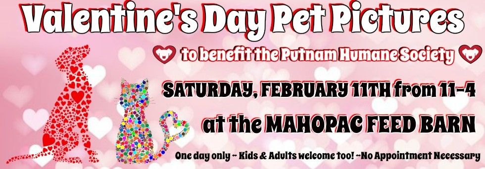 Valentine's Day Pet Pictures at the Mahopac Feed Barn 2017